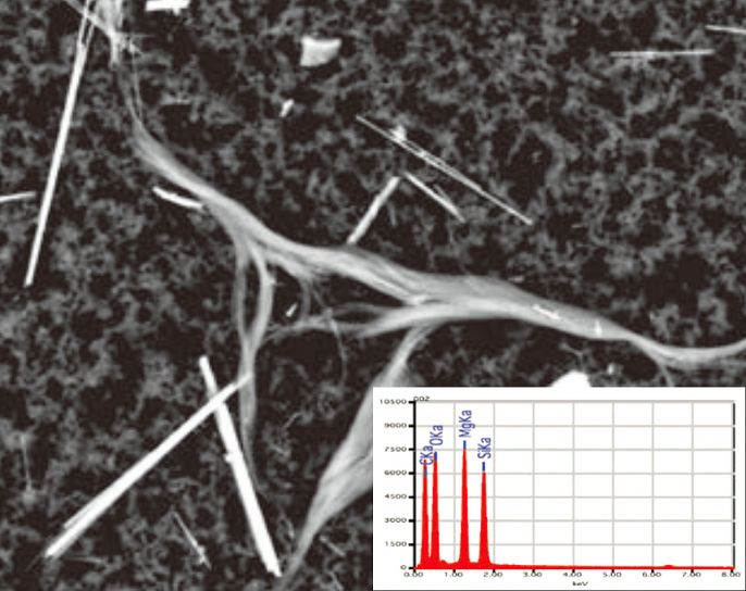 Identification of a chrysotile fibre by means of SEM imaging and EDX spectrum